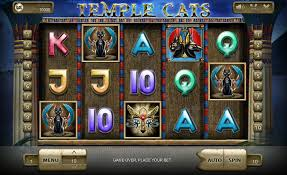 Temple Cats Online Slot Features in Details for Players