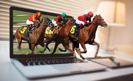 Understanding The Types Of Horse Racing Bets